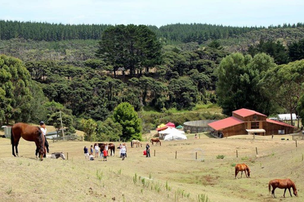 DLL NEW LOOK WEBSITE COLC FROM HILL WITH HORSES AND PEOPLE