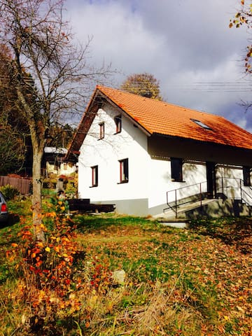 House in a small village