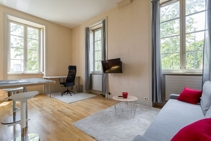 STRICT CLEANING PROTOCOL - Apartment with garden