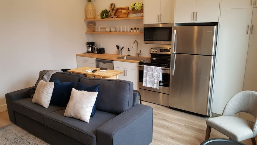 Brand New Two Bedroom Apartment Downtown SLC