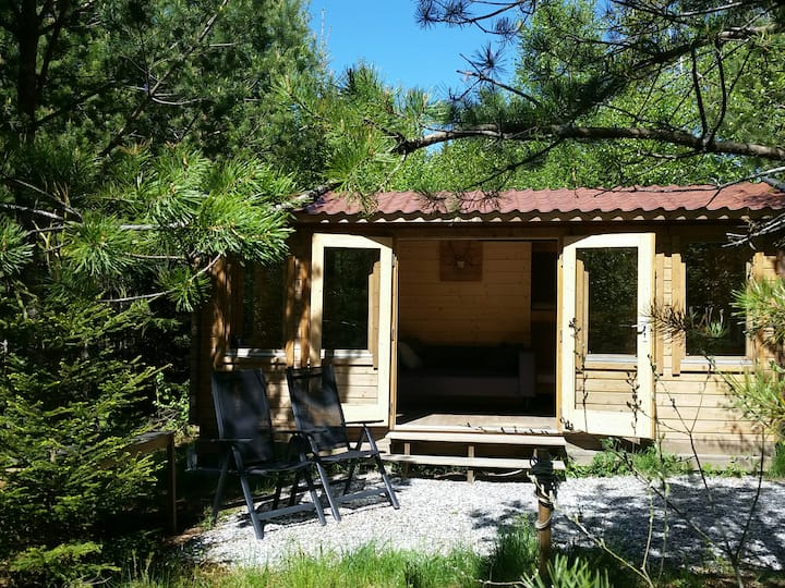 Cozy Lodge near Brattforsheden nature reserve