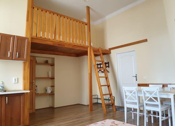 Private LOFT-apartment in city @ Aurel House