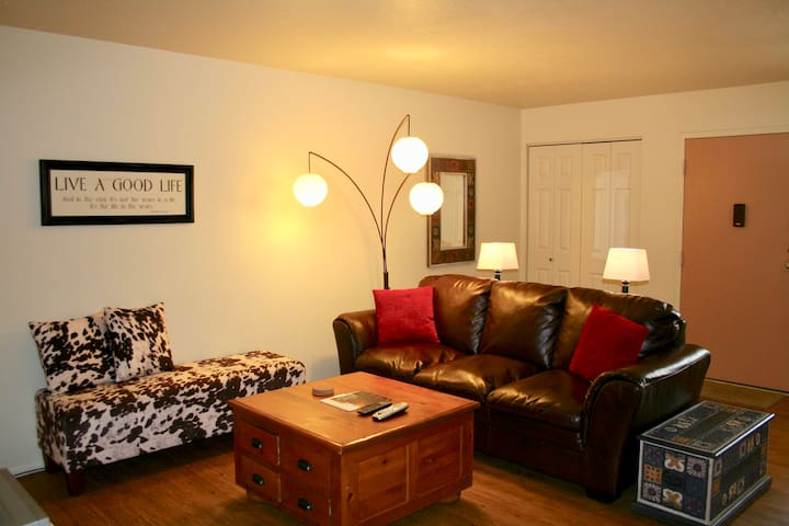 2 Bed/1 Bath Old Town~Library Park Area - Fort Collins - Apartment