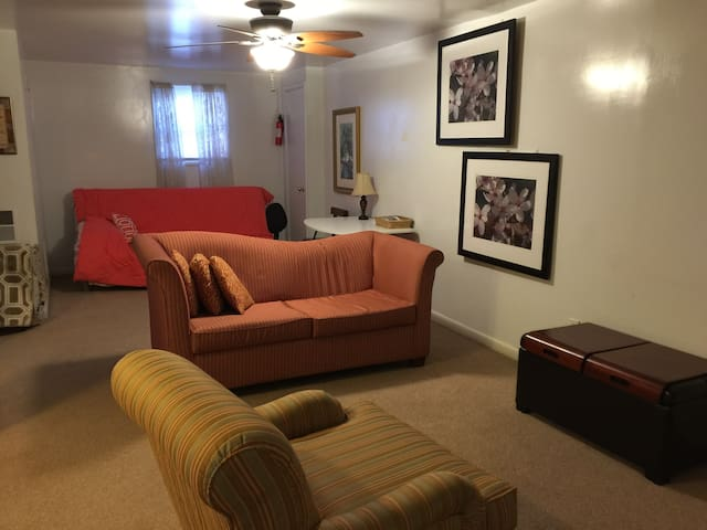 English basement apt - park & walk to Metro