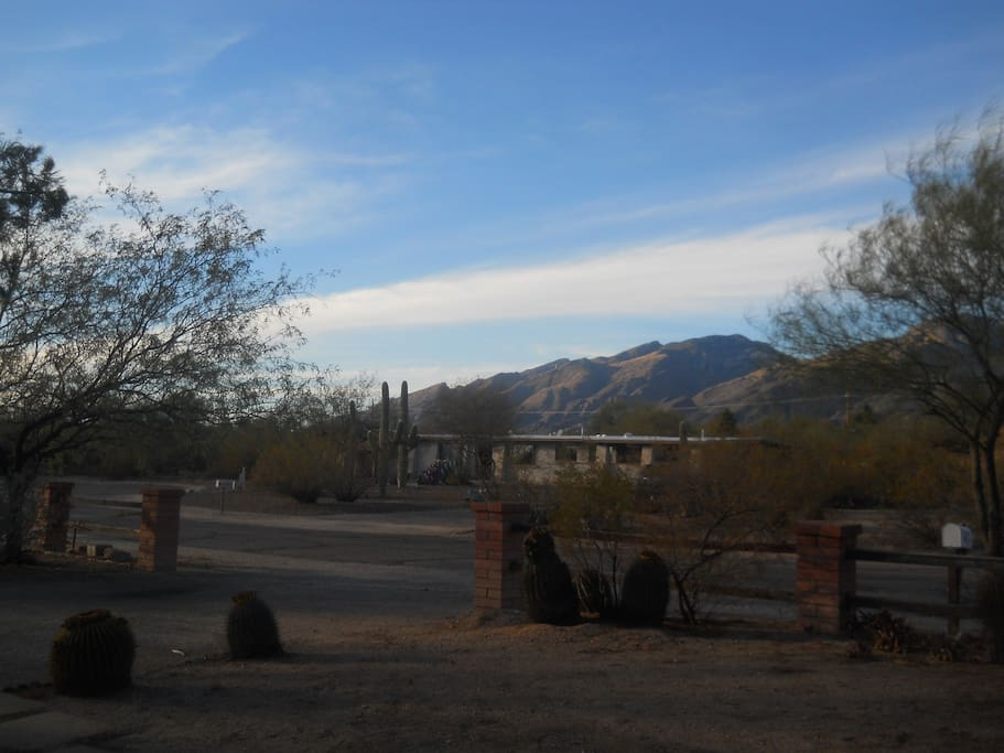 View from front patio