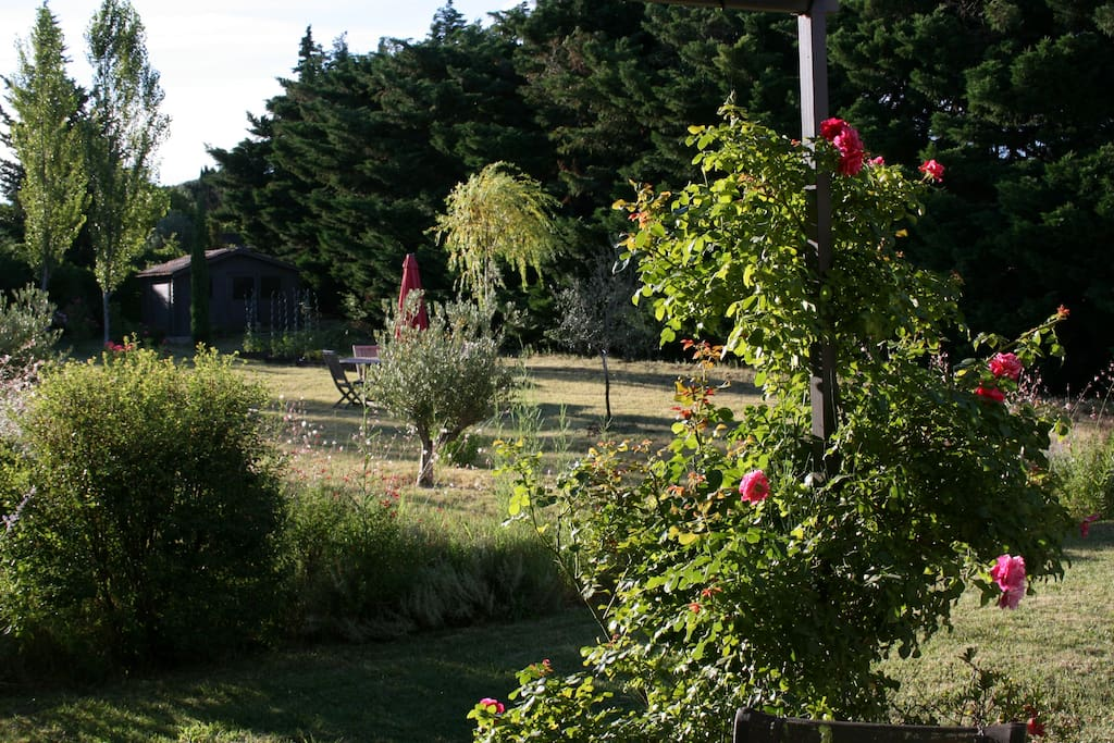 Le calme d'un jardin Provençal....