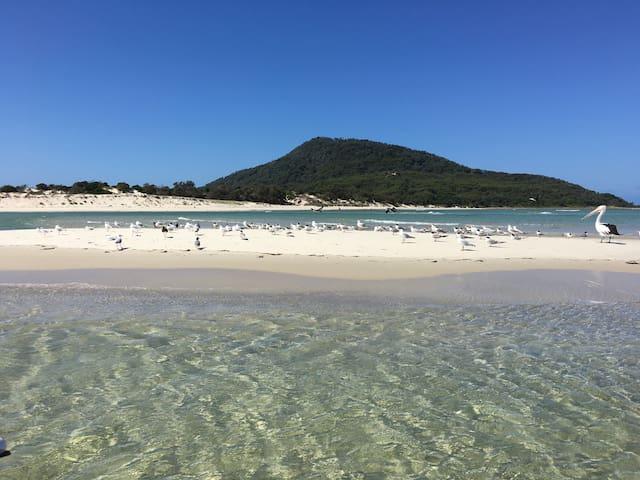Beachfront Winda Woppa - Hawks Nest - Hus