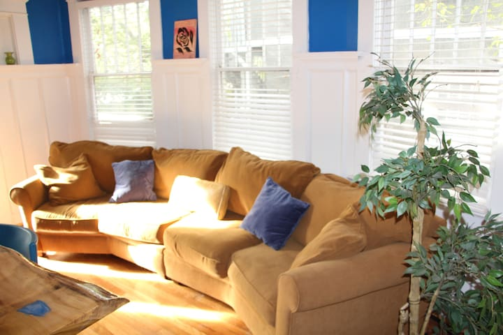 Octagon shaped couch in the living room **Hostel**
