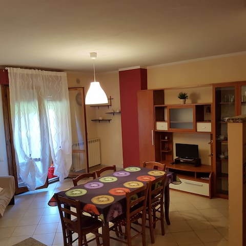 Cicci House - Pisa - Appartement