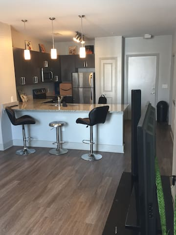 2 Bed2 Bath Luxury Apt for Masters Fully Furnished