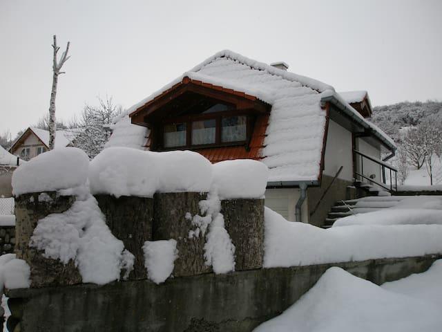 Cosy hut in a pictoresque village under the Tatras