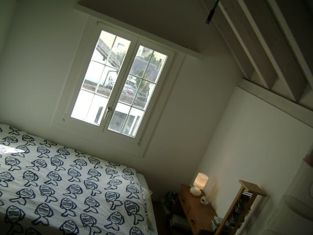 Cosy room near the lake - Meilen - Wohnung