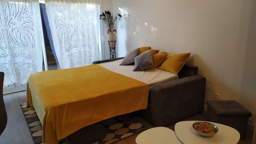 Canapé-lit (Taille 160x200, dépliable en un geste)