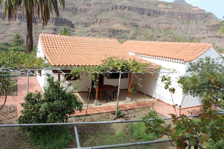 Preciosa y tranquila casa con terreno de frutales - Fataga