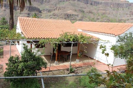 Preciosa y tranquila casa con terreno de frutales - Fataga - House