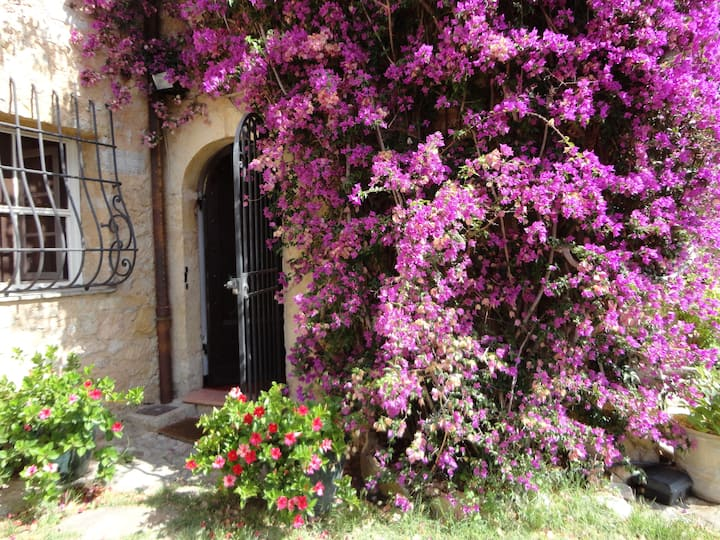Beautiful 17th Century Provencal Home with Pool