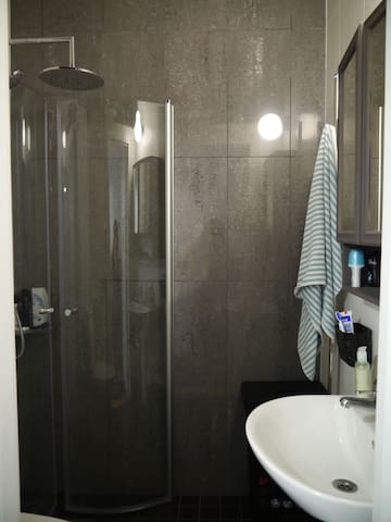 Your private bathroom with shower.