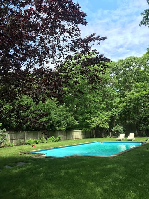 Large pool on sunny private half acre