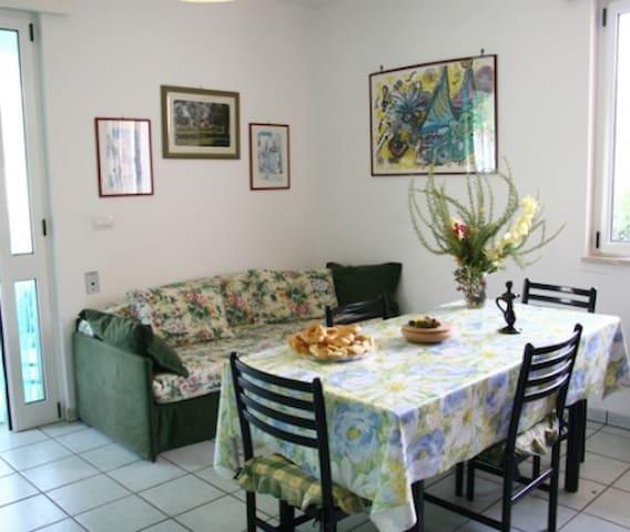 Soggiorno- pranzo con divano letto e cucina attrezzata