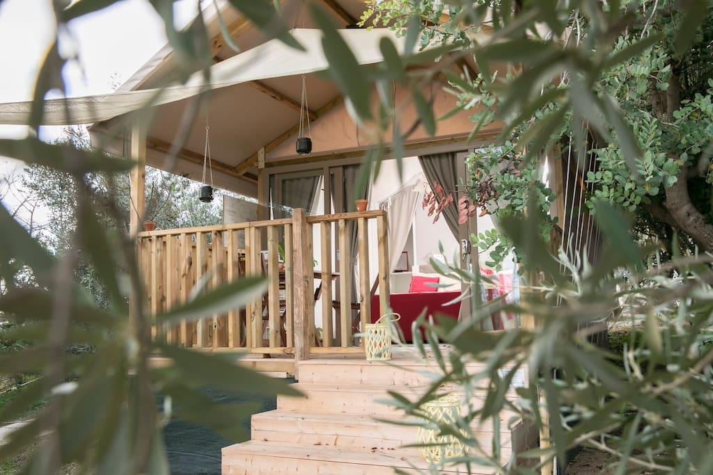 Scorgere dai vetri un giardino di Ulivi nostrani. La privacy, il confort, la natura... riduttivo chiamarlo campeggio. This is #Glamping. Concediti un momento romantico in relax, chiama adesso!