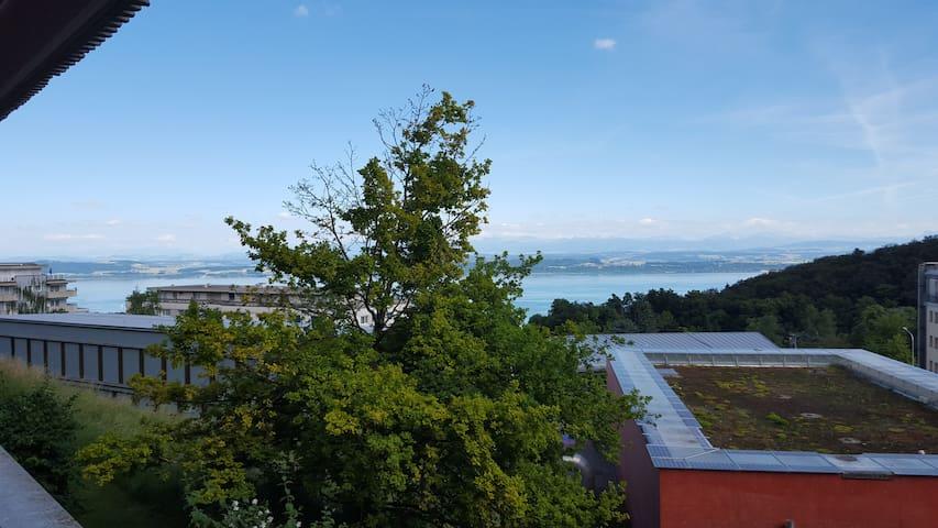 appartement vu des Alpes - Neuchâtel - Huoneisto