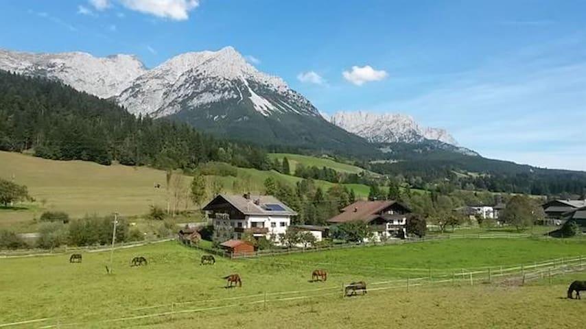 Traumapartment in den Kitzbüheler Alpen