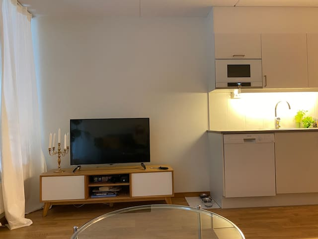 Two room apartment 10 minutes from inner city