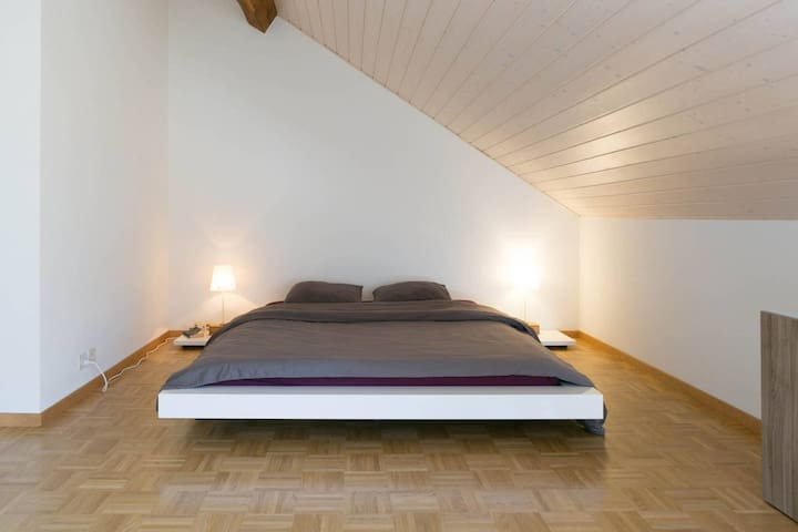 Center : Big room in attic apartment
