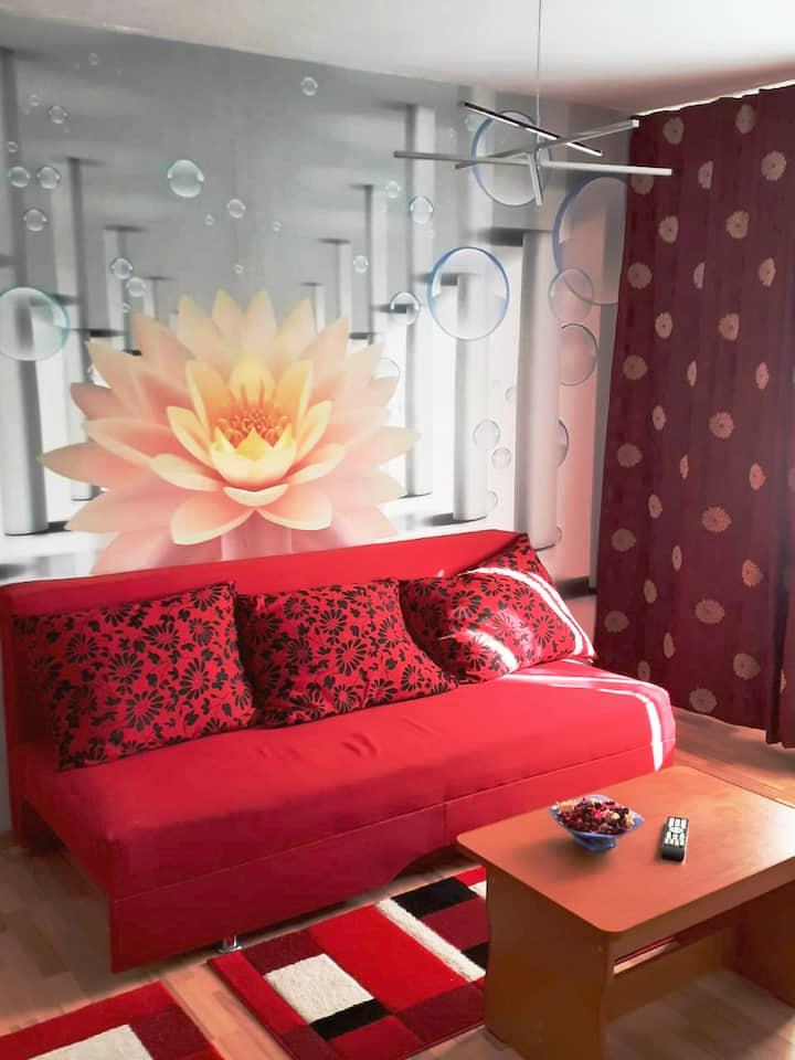 G&V modern luxury apartment, Drumul Taberei
