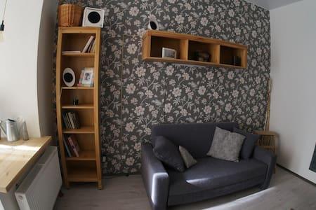 Супер уютная студия в историческом центре