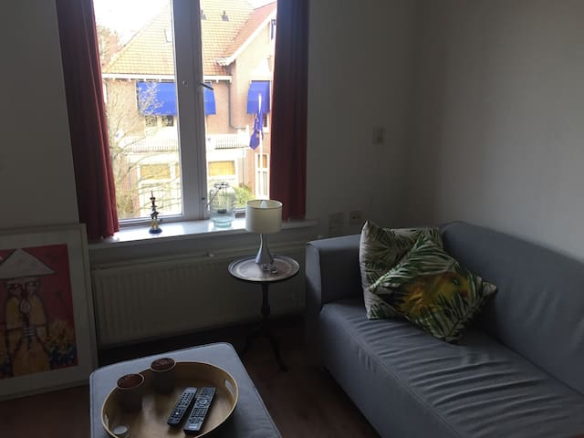 Nice apartment near citycentre and Haarlemmerhout - Haarlem - Leilighet