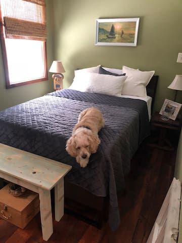 Pet friendly retreat close to Baltimore & DC