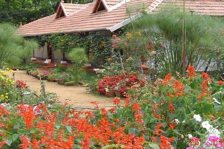 Rosegardens Homestay 4 - Munnar