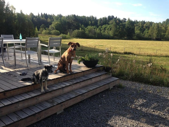 Relax at small beautiful farm near Stockholm City