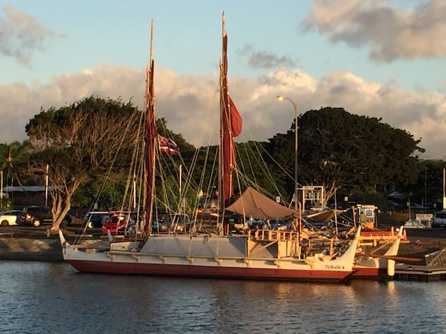 Nearby Haleiwa Harbor provides access to ocean adventures.