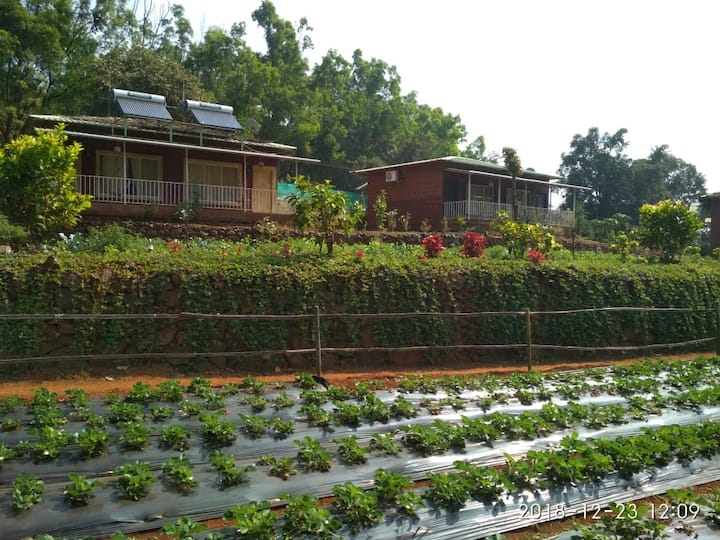 Jungle Valley Agriculture Resort With AC Room