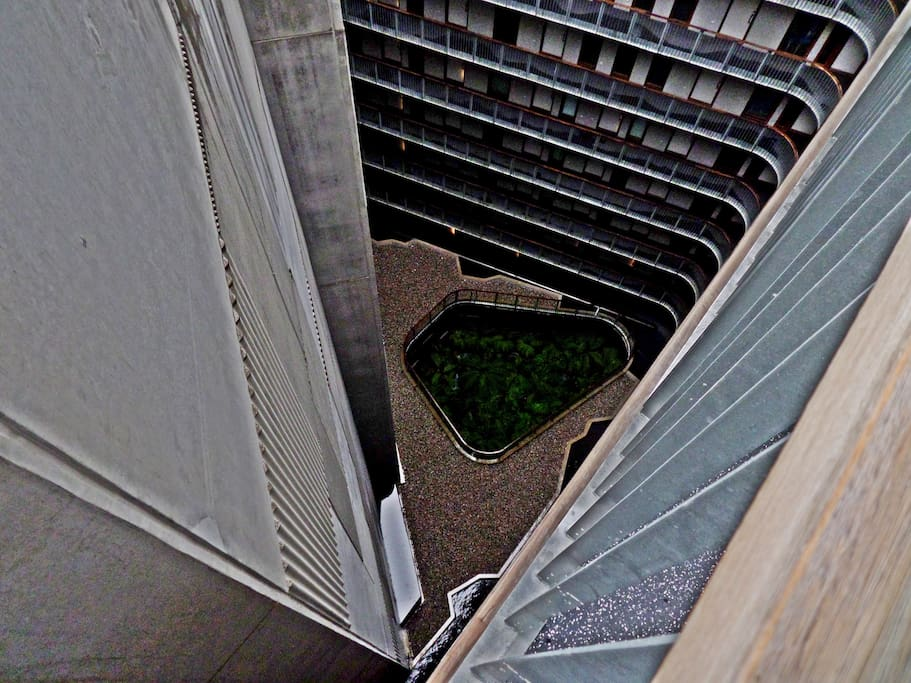 Looking down from the front walkway on the Hotel Hotel fernery way below