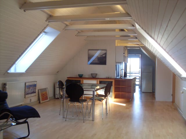Spacious apartment. Proximity to nature and town. - Horsens - Apartamento