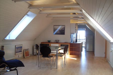 Spacious apartment. Proximity to nature and town. - Horsens - 公寓
