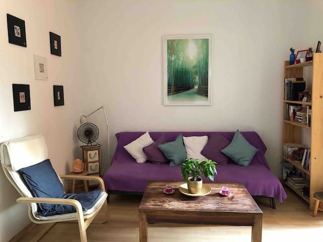 Big room (Up to 5 guests) close to España Square