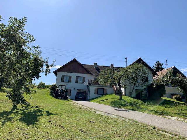Apartment im Weingarten - Apartment Rebstock