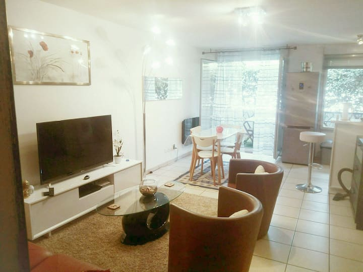 Bel appartement cozy + terrasse+parking privé Lyon