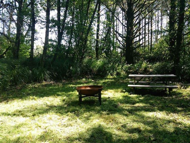 Quiet Camping on a farm North Cove Washington