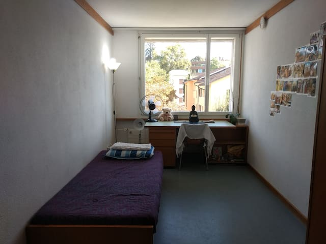 Bright, clean and nice apartment at least price - Zurique