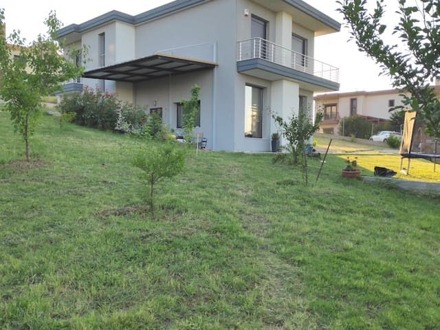 Luxurius villa in the country