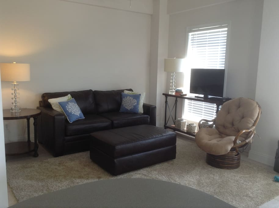 Sofa sleeper in living room (Double)