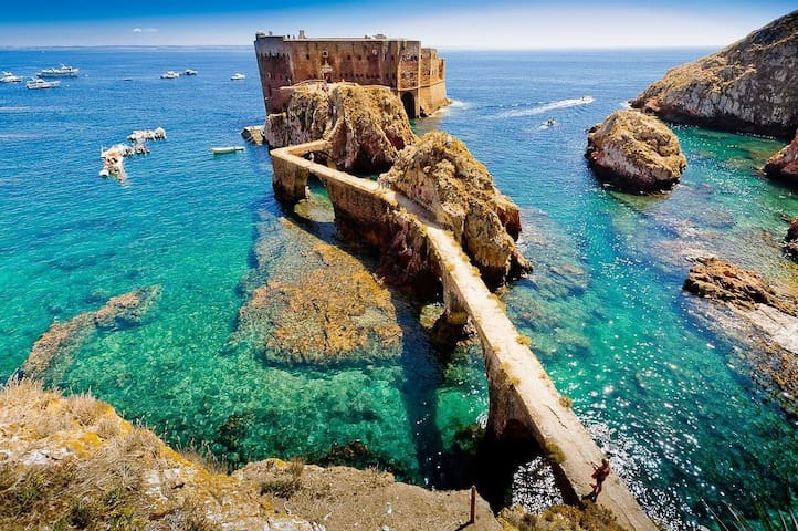 Discoer the beautiful Island of Berlenga