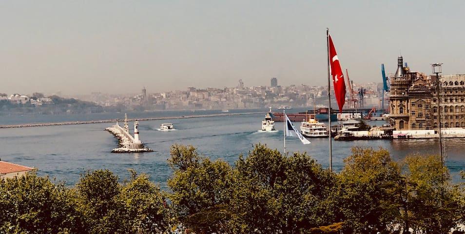 Flat PerfectviewofBosphorus Kadıköy VINYL İstanbul