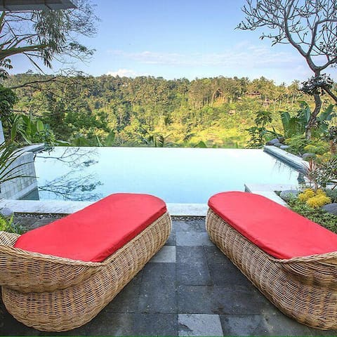 Infinity pool 3 broom private villa - Ubud  - Villa