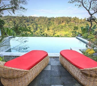 Infinity pool 3 broom private villa - Ubud  - Huvila